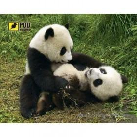 Кабель ATcom удлинитель USB2.0 AM/AF 0.8 м.