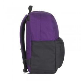 Ноутбук Asus X542BA (X542BA-GQ019); 15.6 (1366x768) TN LED глянцевый антибликовый / AMD E2-9000 (1.8 - 2.2 ГГц) / RAM 4 ГБ / HDD